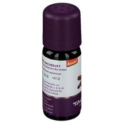 TAOASIS® Zimt-Öl Bio